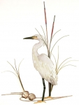 Bovano - W368 - Snowy Egret with Shells