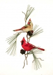 Bovano - W4442 - Two Cardinals with 3D Pine Cones