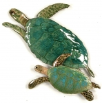 Bovano - W624 - Two Sea Turtles