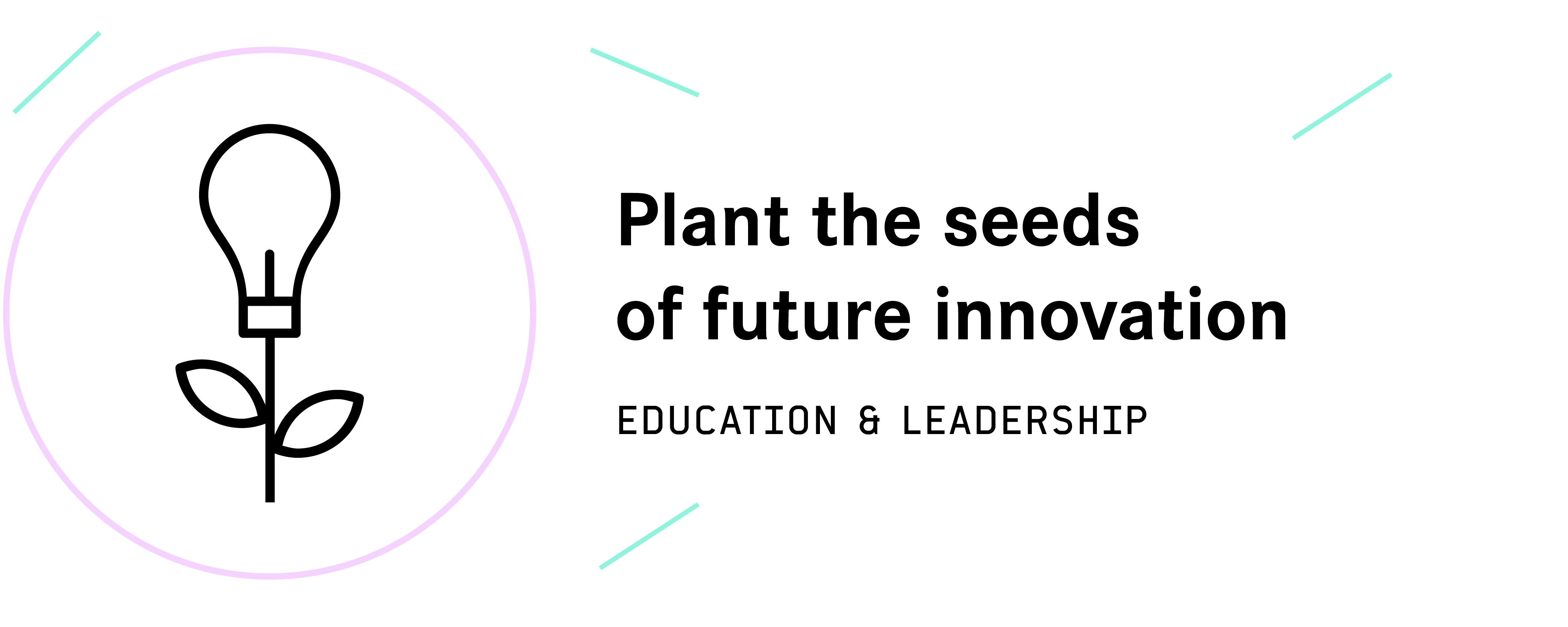 Plant the seeds of future innovation