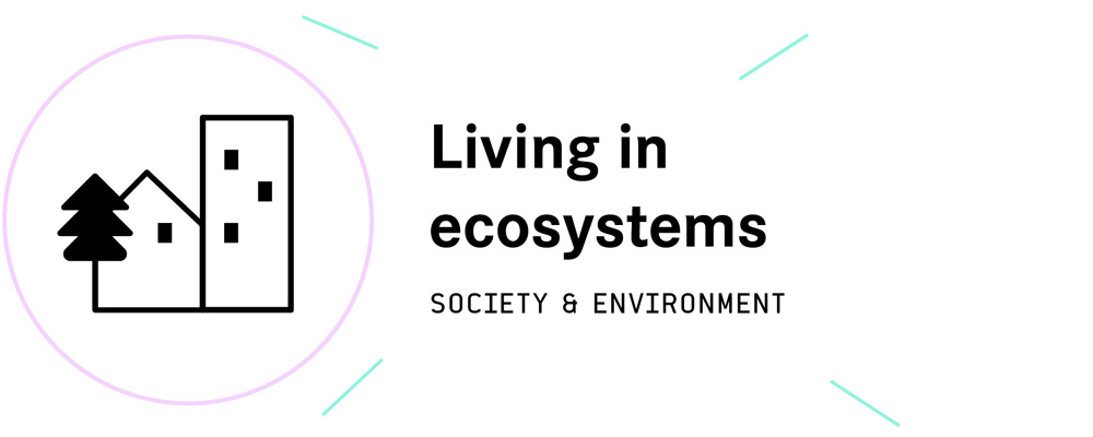 The pillars society and environnement