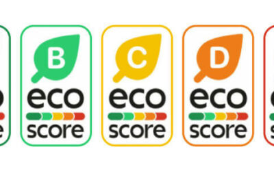 Eco-score: from idea to implementation
