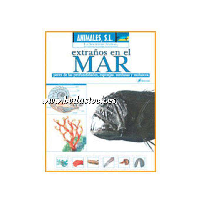Imagen Animales S.L. DVD Animales S.L. - Extraños en el mar. Peces de las profundidades, esponjas, medudas y moluscos (Últimas Unidades)