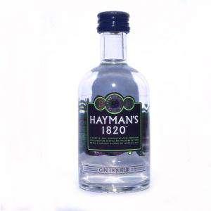 Ginebra - Ginebra Gin Liqueur Hayman´s 1820 5cl
