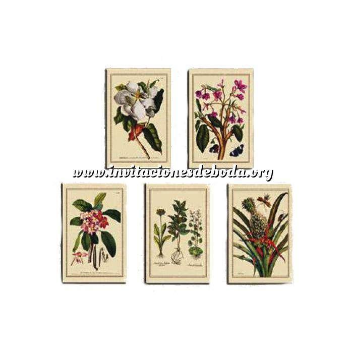 Imagen Baño y aromas Laminas de arte botánico 5 uds (decoracion)