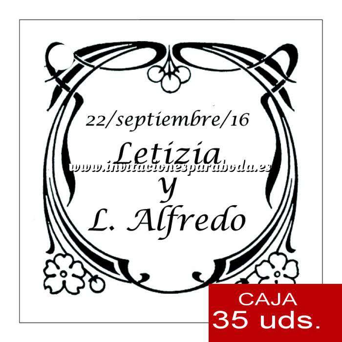 Imagen Etiquetas impresas Etiqueta Modelo D09 (Paquete de 35 etiquetas 4x4)