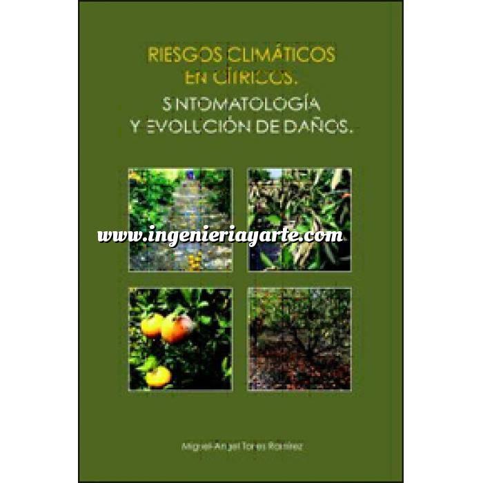 Imagen Fruticultura Riesgos climáticos en cítricos. Sintomatología y evolución de daños