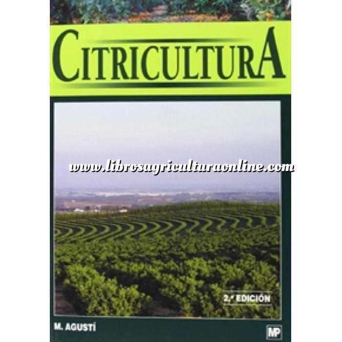 Imagen Citricultura Citricultura