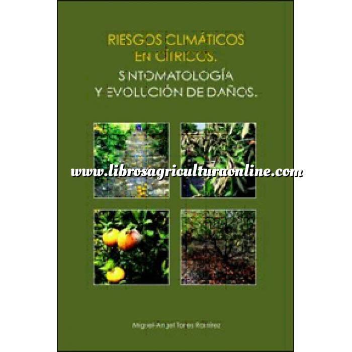 Imagen Citricultura Riesgos climáticos en cítricos. Sintomatología y evolución de daños