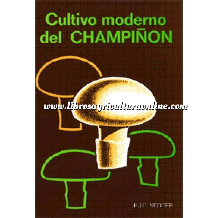 Imagen Cultivos Industriales Cultivo moderno del champiñón