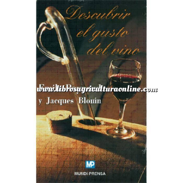 Imagen Enología Descubrir el gusto del vino