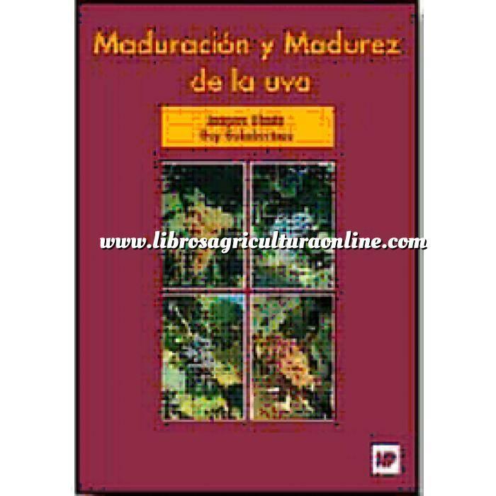Imagen Enología Maduración y madurez de la uva