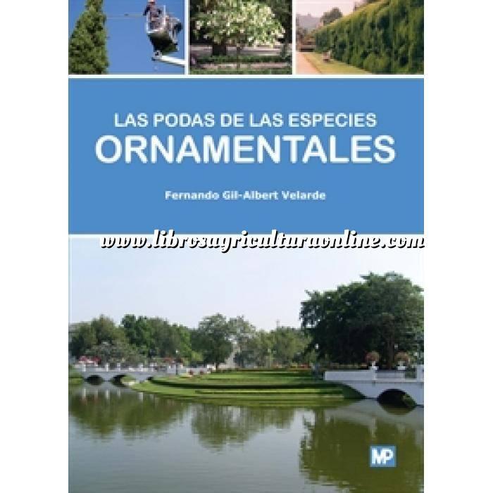 Imagen Fisiología Vegetal Las podas de las especies ornamentales