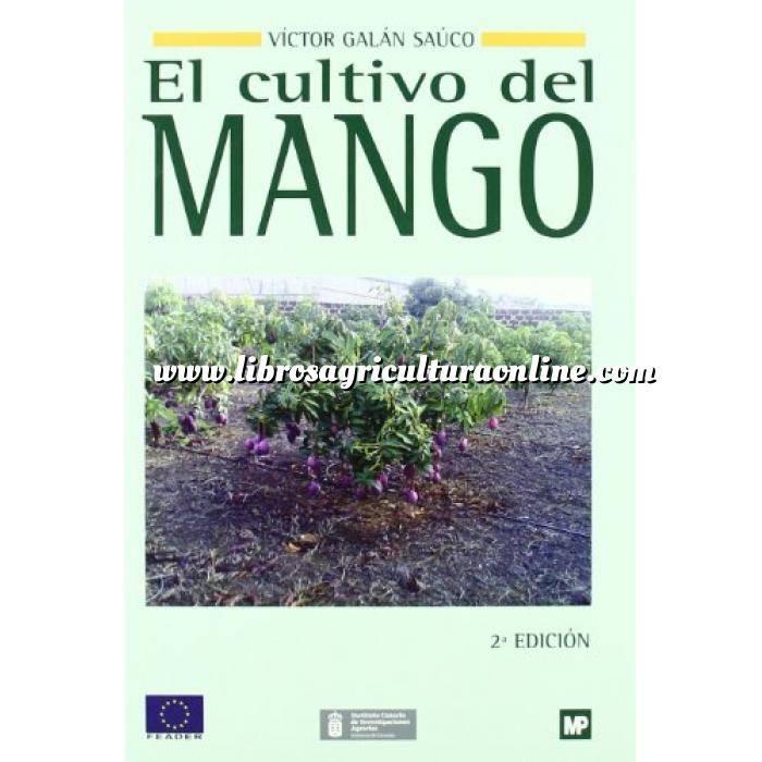 Imagen Fruticultura El cultivo del mango