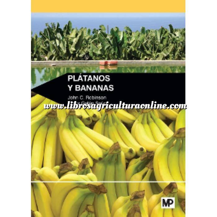 Imagen Fruticultura Plátanos y bananas