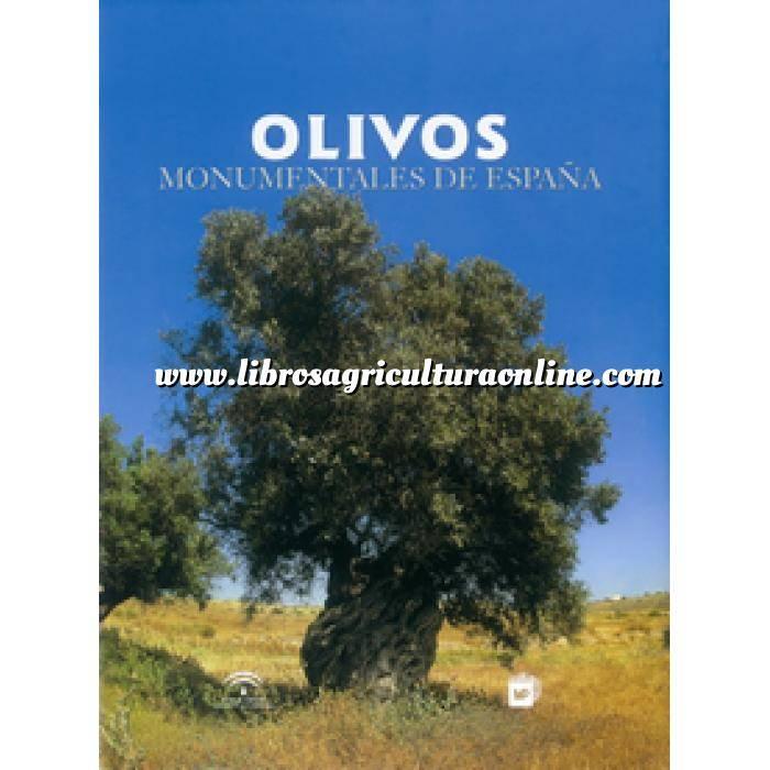 Imagen Olivicultura  Olivos monumentales de España