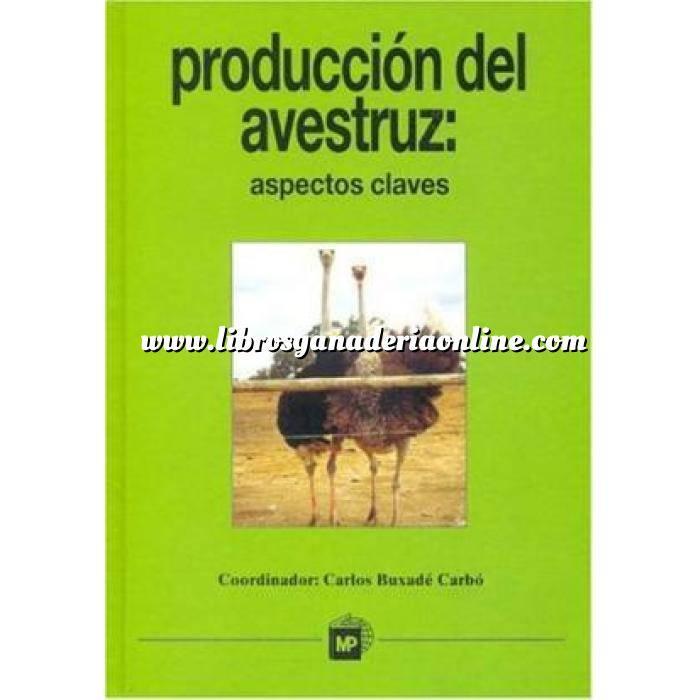 Imagen Avicultura Producción del avestruz: Aspectos claves.