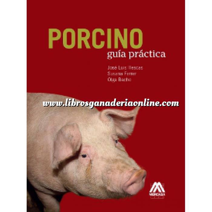 Imagen Porcino Porcino. Guía práctica