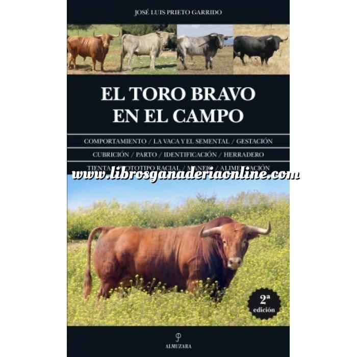 Imagen Toros y Tauromaquia El toro bravo en el campo
