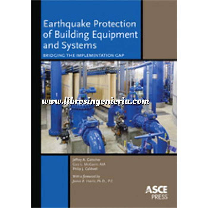 Imagen Ingeniería sísmica