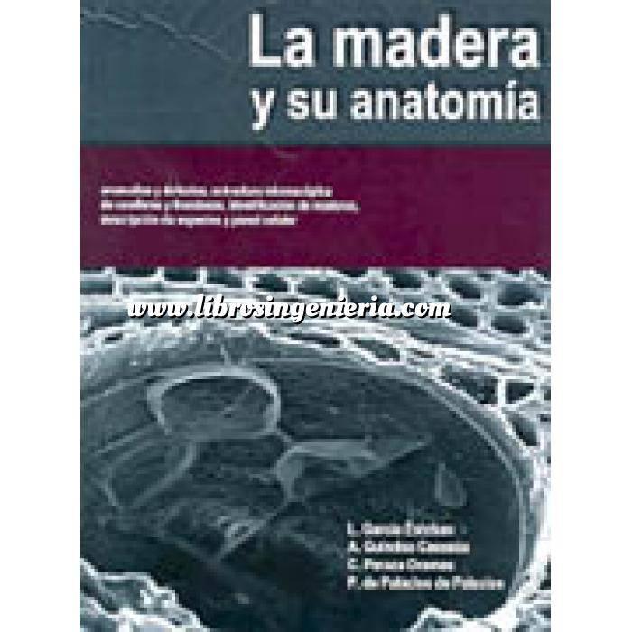 Imagen Madera La madera y su anatomia