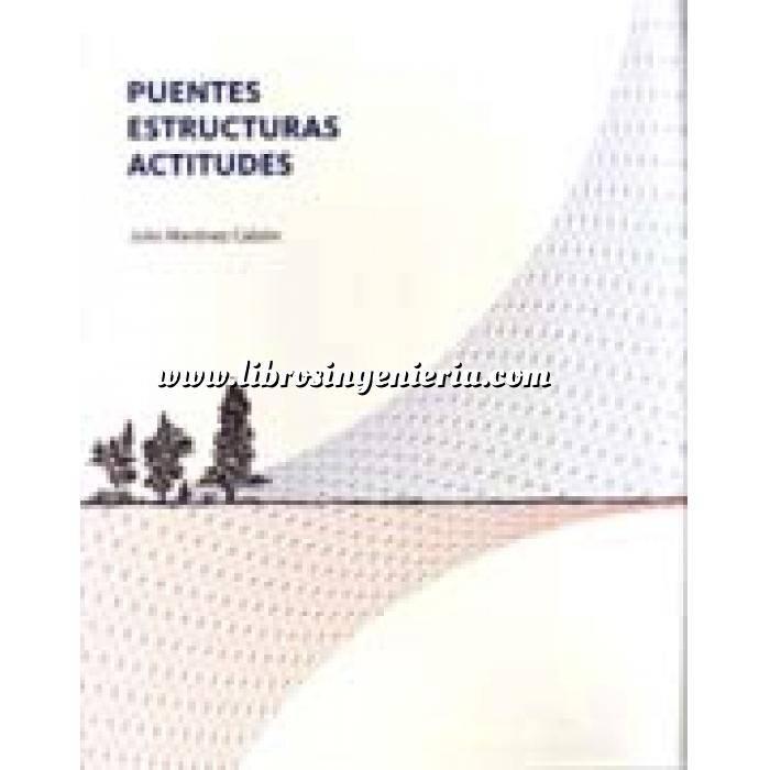 Imagen Puentes y pasarelas Puentes estructuras actitudes