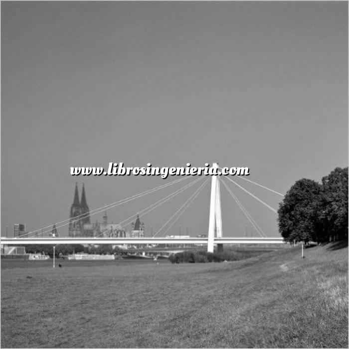 Imagen Puentes y pasarelas Rhine Bridges