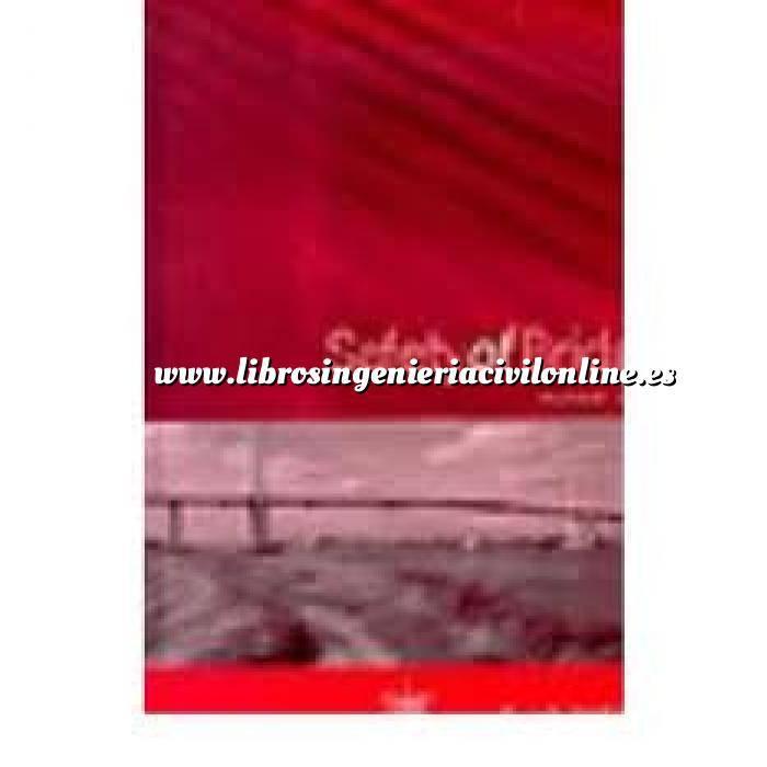 Imagen Puentes y pasarelas Safety of bridges
