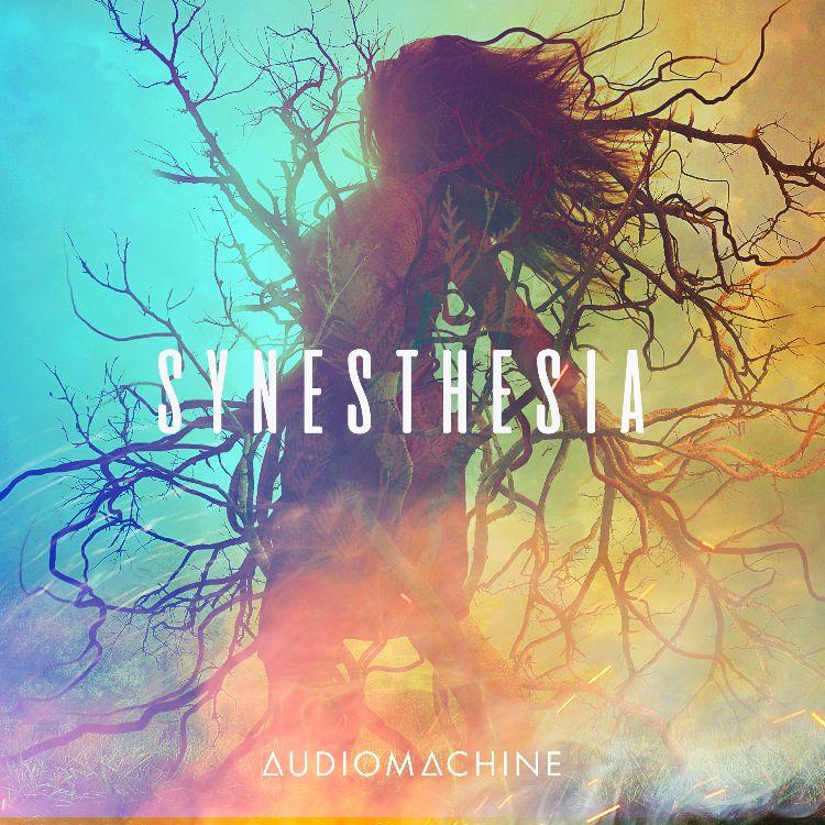 Synesthesia packshot