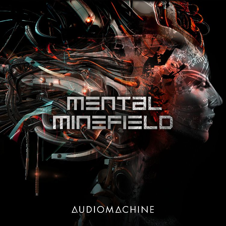 Mental Minefield packshot