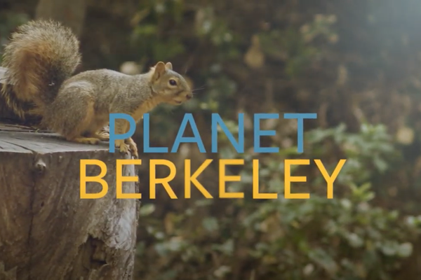 Planet Berkeley.png