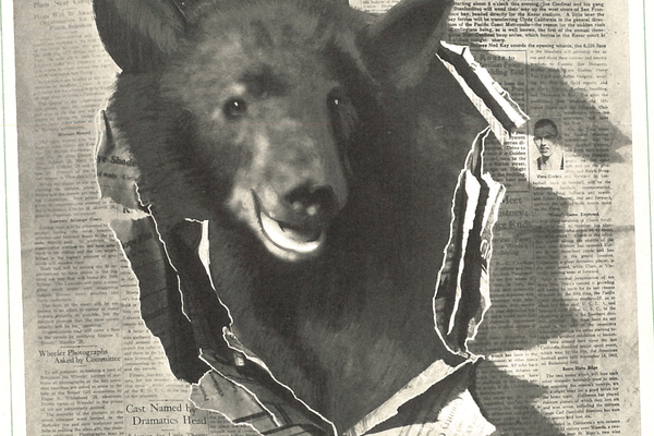 1928 Daily Californian Bear.png