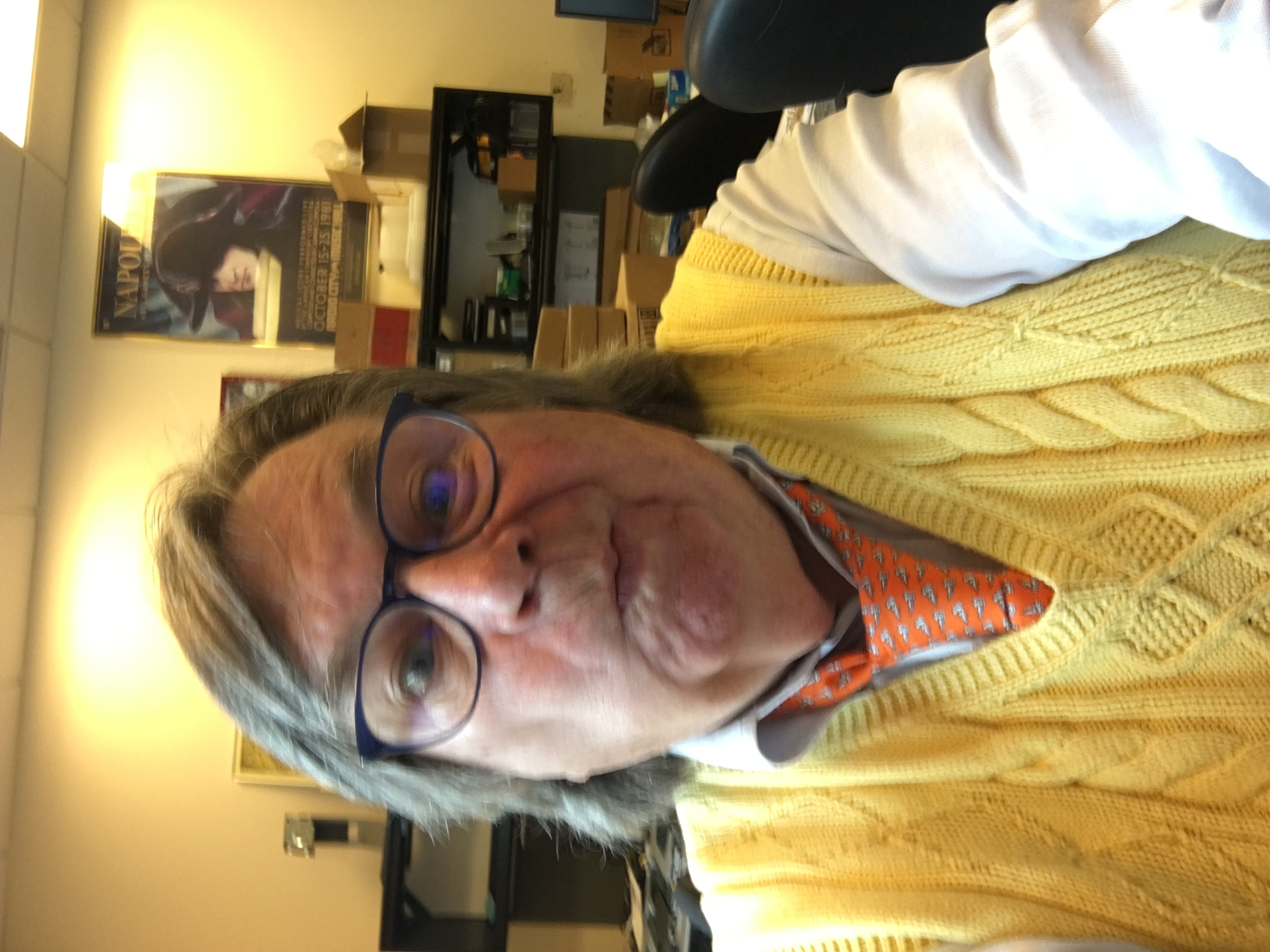 Photo of Greg in a yellow vest and orange tie.