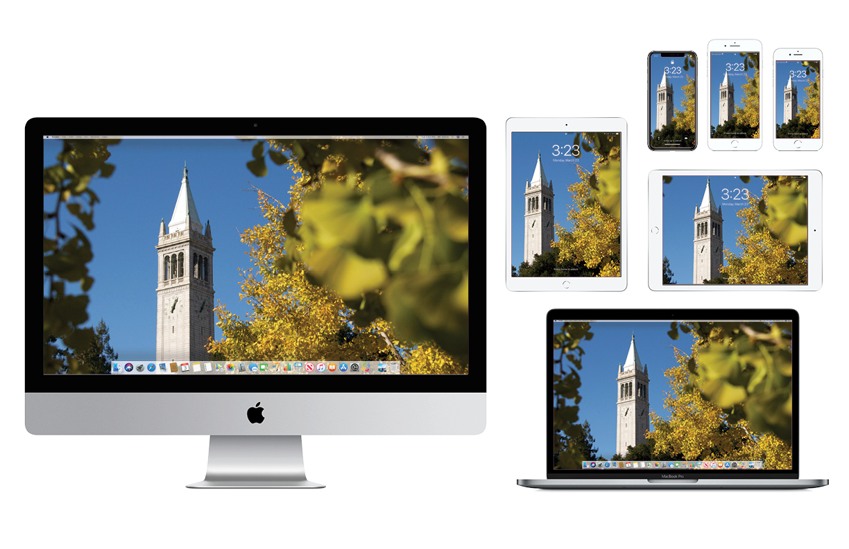 Wallpaper with Campanile viewed through foliage