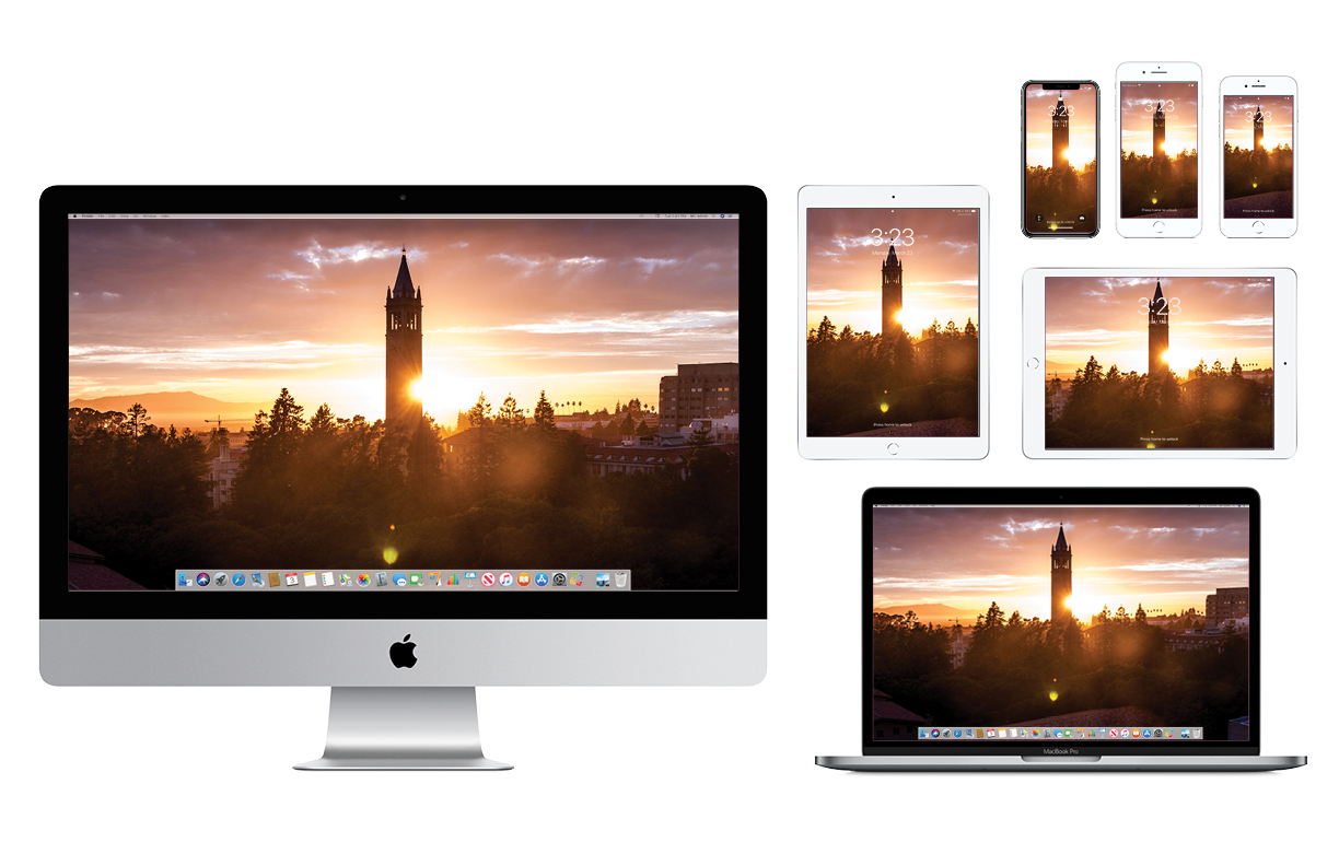 Wallpaper with Campanile silhouetted against sunset