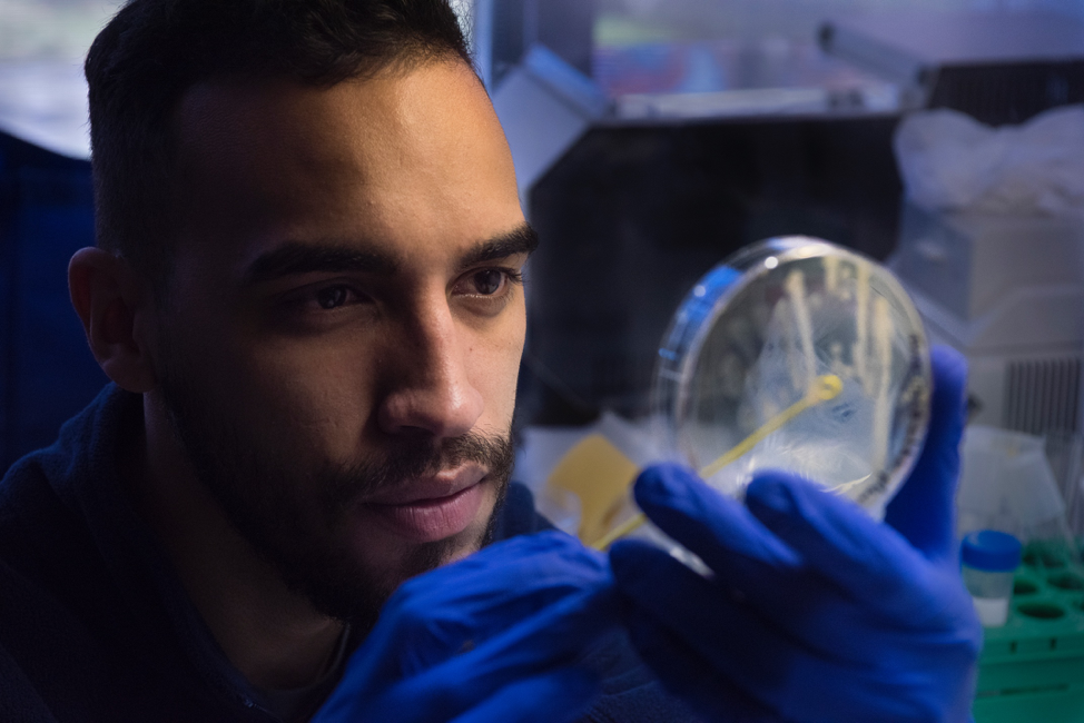 Photo of a student wearing blue rubber gloves and peering through a magnifying glass.