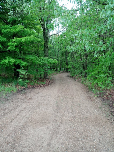 Private road leading into the group tent site.