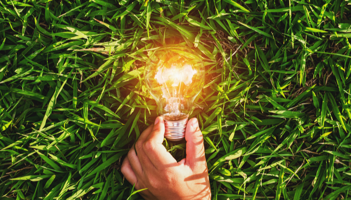 Financial education: The rise of green energy companies