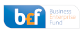 Business Enterprise Fund