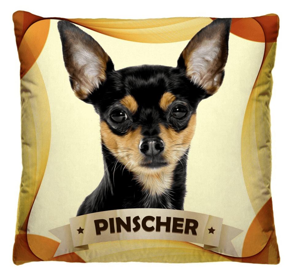 Almofada Decorativa Estampada Pinscher
