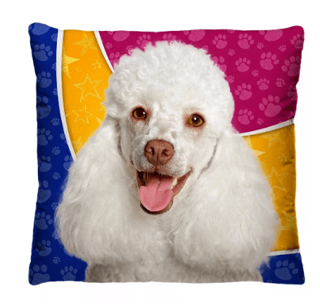 Almofada Decorativa Estampada Poodle