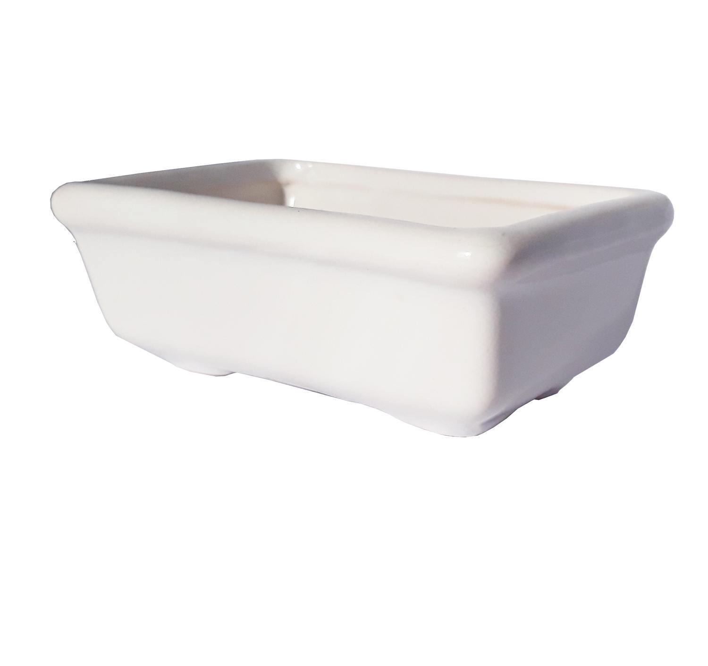 Bonsai Branco - 55