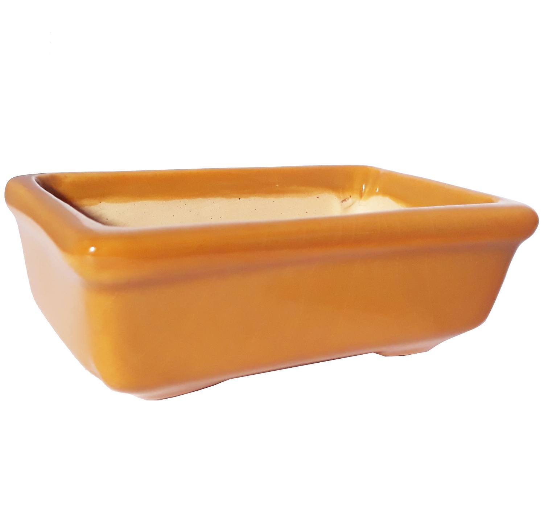 Bonsai Caramelo - 55