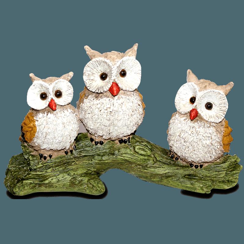 Trio De Coruja No Tronco Gesso Colorido