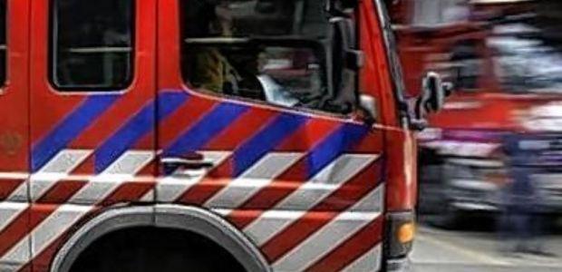 https://berkelland.vvd.nl/nieuws/38115/reactie-vvd-op-instemmen-burgemeester-berkelland-vnog