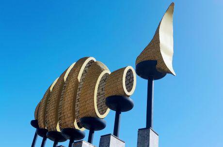 De Visch in Berkel Centrum