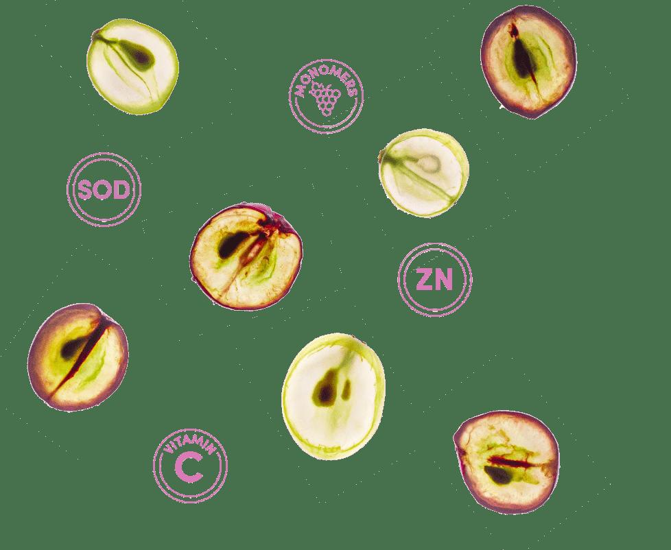 skinax grape SOD melon vitamin C zinc