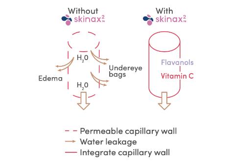 mécanisme d'action cernes skinax