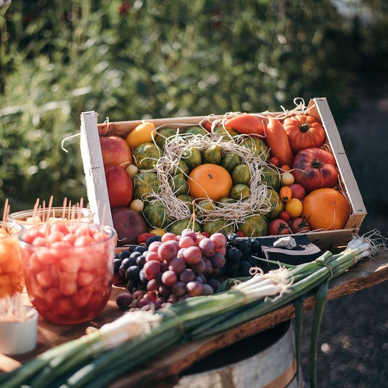 corbeille-de-fruits-et-legumes