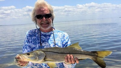 Gulf Snook Fishing Season
